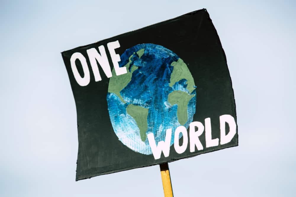 """A protest sign that reads """"One World"""" and has an image of the globe"""
