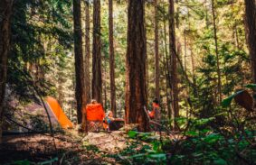 A family sat around their forest campsite