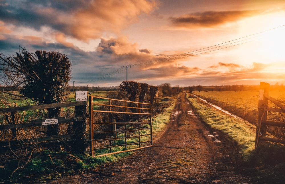 A gate left open on a rural farm track