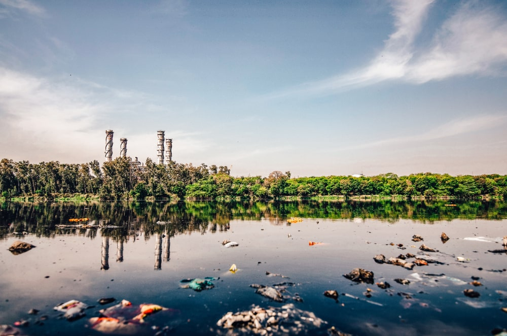A river polluted with litter