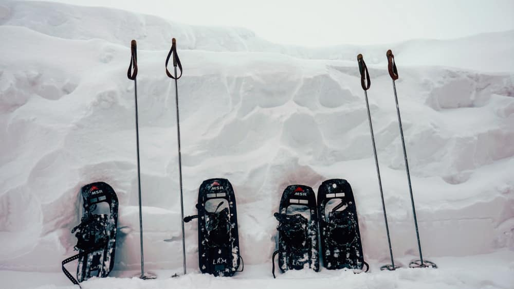 Two sets of snowshoes and poles resting vertically in the snow