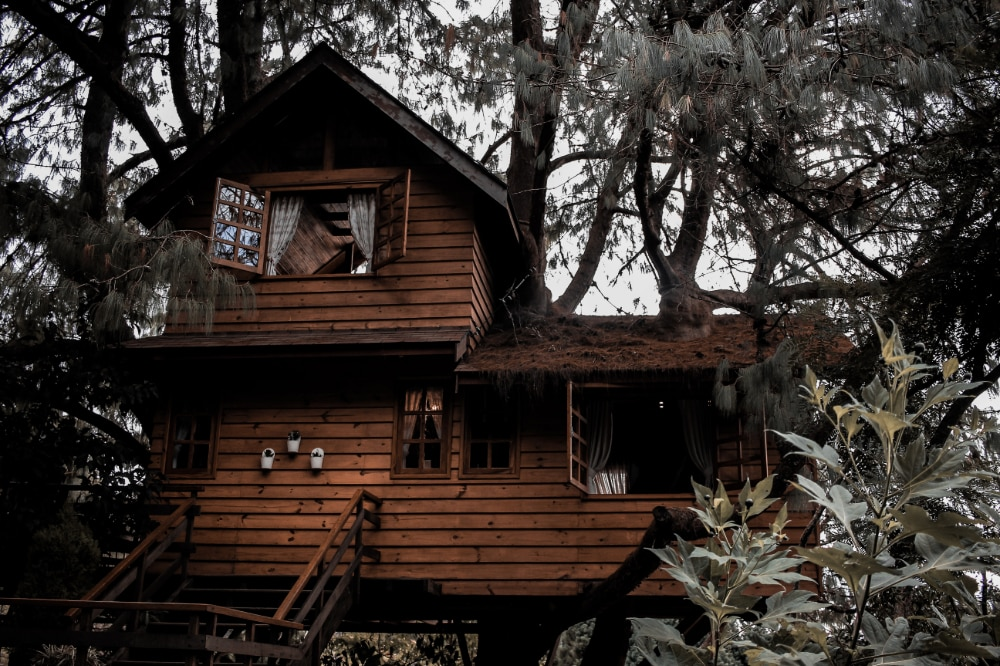 A treehouse nested among the branches with electricity and other modern amenities