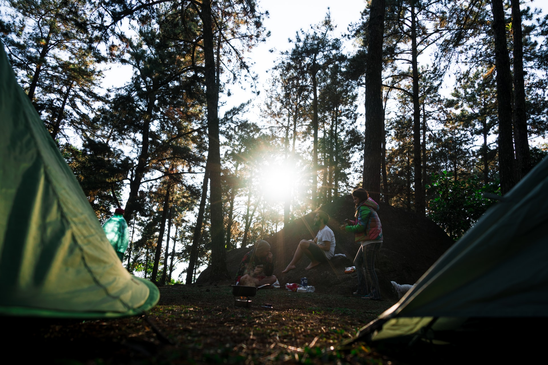 People sitting next to two tents in the forest at sunset.