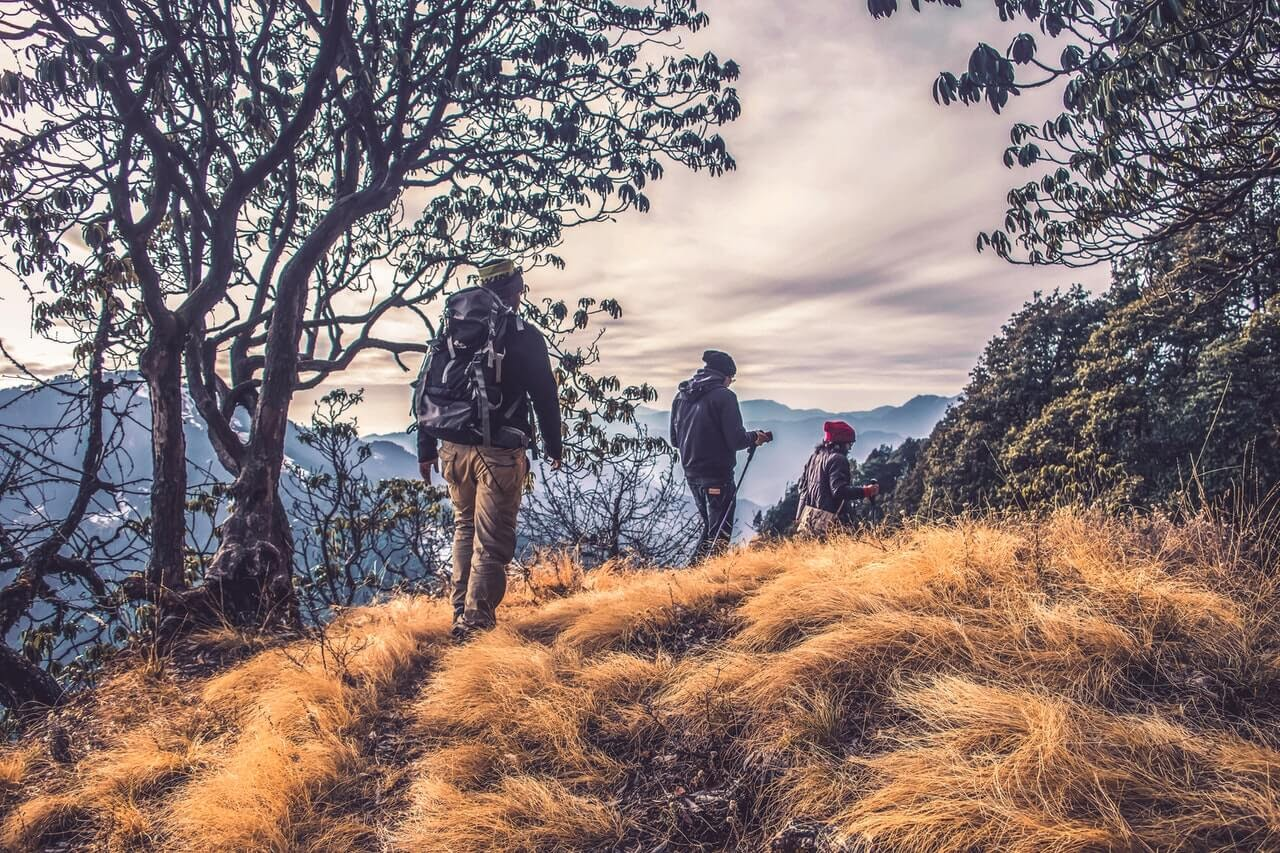 A group of backpackers hiking