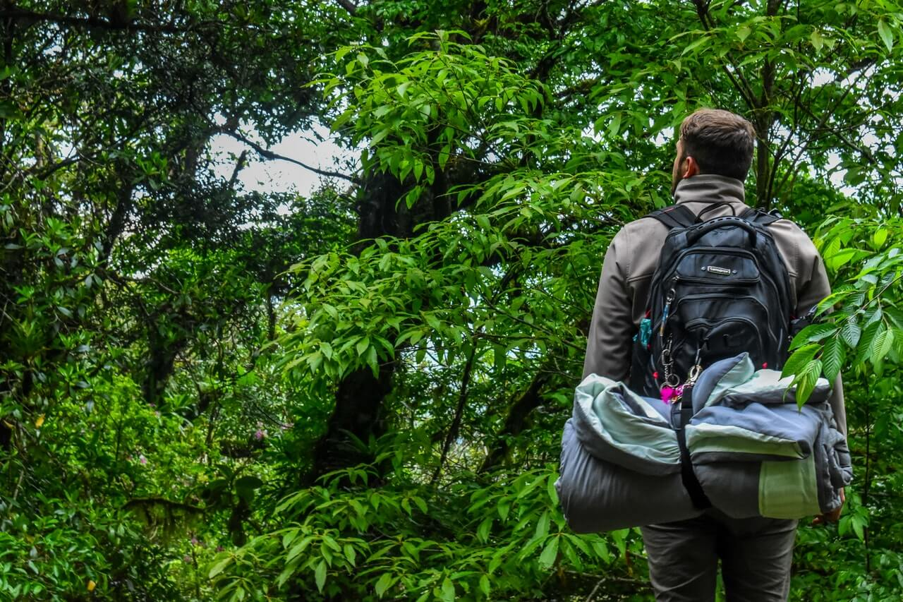 A solo backpacker with gear and tent looks at the sky through thick trees