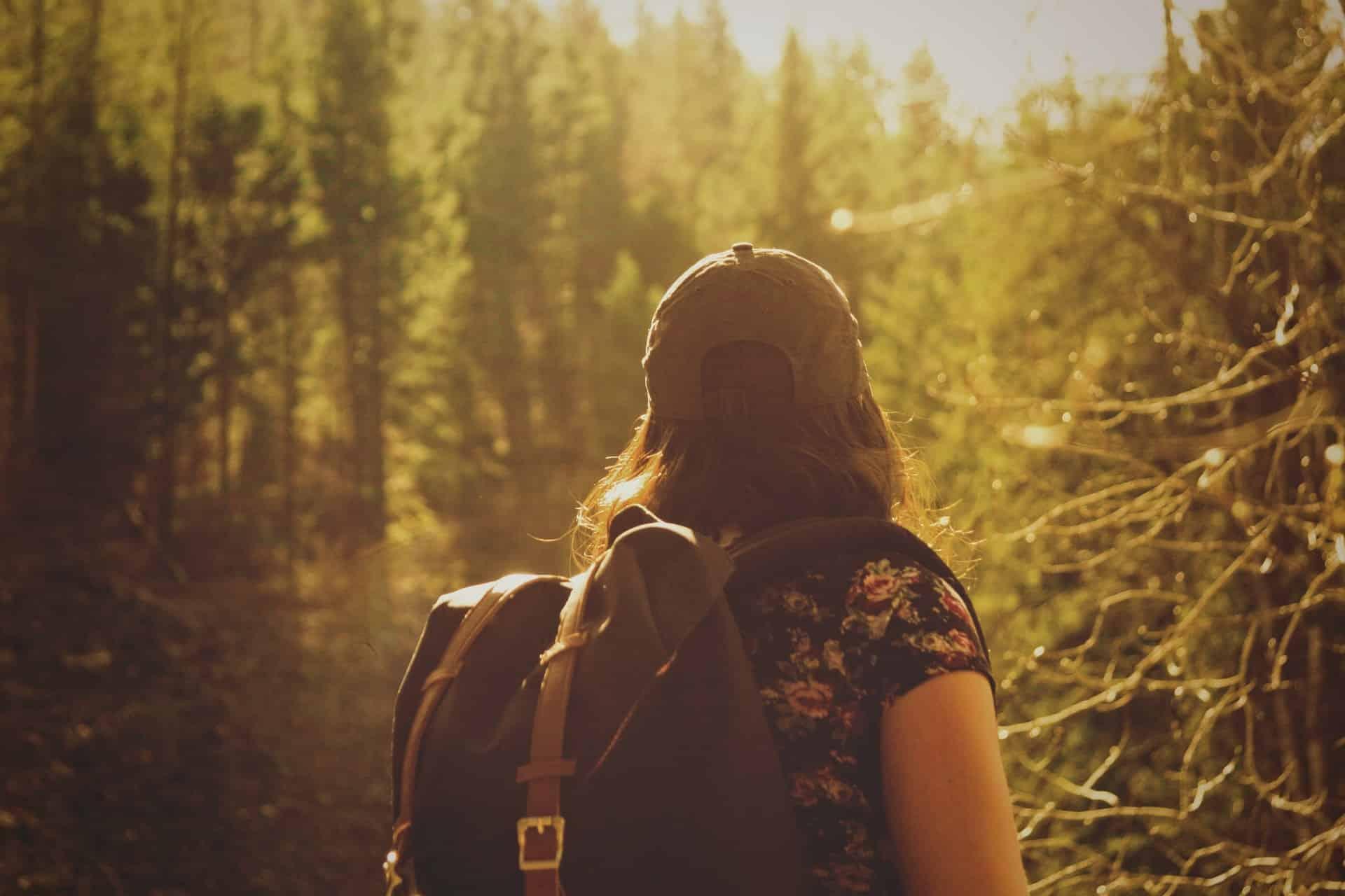 Backpacker in sunny woods