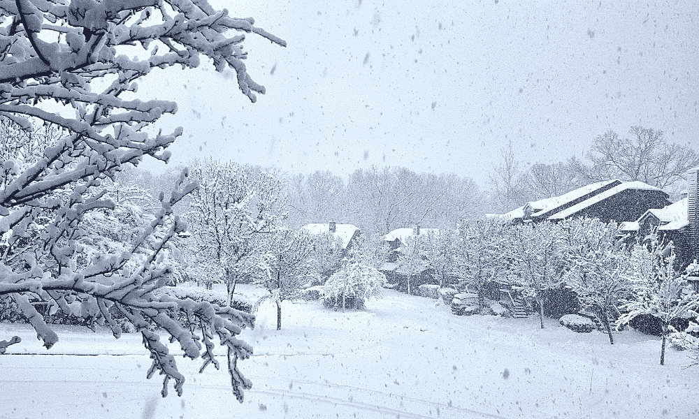 A snow storm in winter